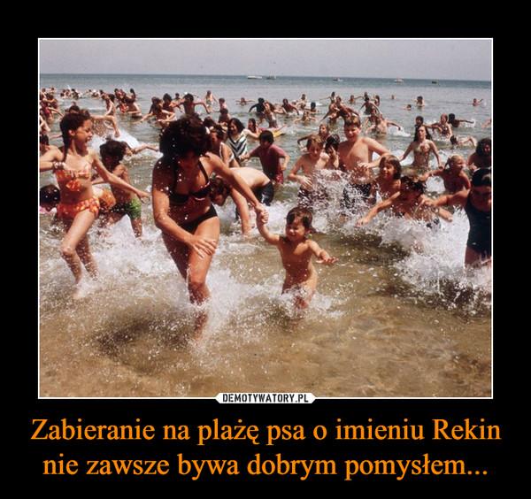 Zabieranie na plażę psa o imieniu Rekin nie zawsze bywa dobrym pomysłem... –