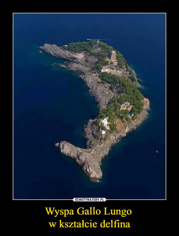 Wyspa Gallo Lungo w kształcie delfina –