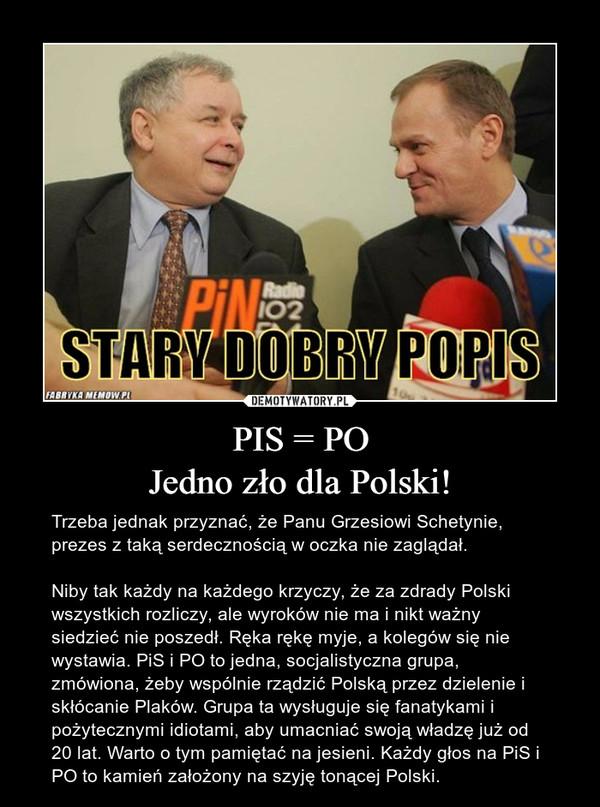 PIS = POJedno zło dla Polski! – Trzeba jednak przyznać, że Panu Grzesiowi Schetynie, prezes z taką serdecznością w oczka nie zaglądał.Niby tak każdy na każdego krzyczy, że za zdrady Polski wszystkich rozliczy, ale wyroków nie ma i nikt ważny siedzieć nie poszedł. Ręka rękę myje, a kolegów się nie wystawia. PiS i PO to jedna, socjalistyczna grupa, zmówiona, żeby wspólnie rządzić Polską przez dzielenie i skłócanie Plaków. Grupa ta wysługuje się fanatykami i pożytecznymi idiotami, aby umacniać swoją władzę już od 20 lat. Warto o tym pamiętać na jesieni. Każdy głos na PiS i PO to kamień założony na szyję tonącej Polski.