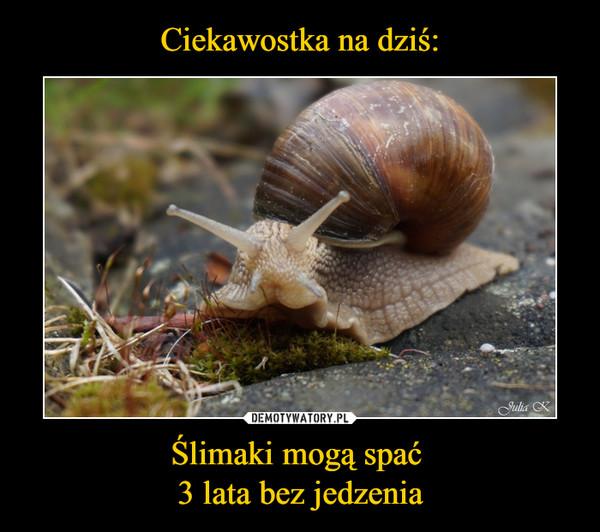 Ślimaki mogą spać 3 lata bez jedzenia –