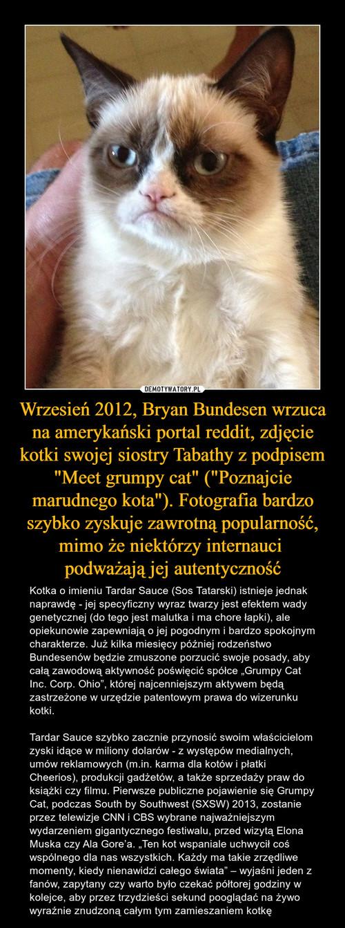 """Wrzesień 2012, Bryan Bundesen wrzuca na amerykański portal reddit, zdjęcie kotki swojej siostry Tabathy z podpisem """"Meet grumpy cat"""" (""""Poznajcie marudnego kota""""). Fotografia bardzo szybko zyskuje zawrotną popularność, mimo że niektórzy internauci  podważają jej autentyczność"""