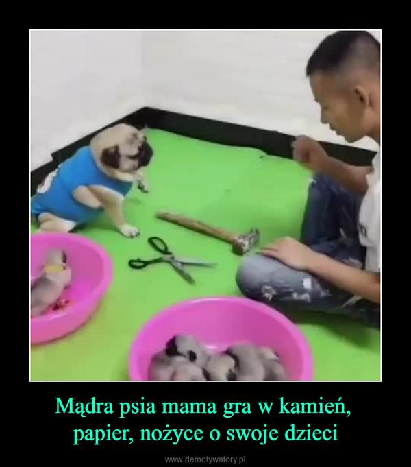 Mądra psia mama gra w kamień, papier, nożyce o swoje dzieci –