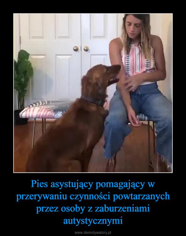 Pies asystujący pomagający w przerywaniu czynności powtarzanych przez osoby z zaburzeniami autystycznymi –