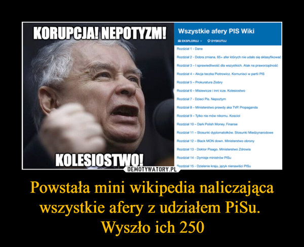 Powstała mini wikipedia naliczająca wszystkie afery z udziałem PiSu. Wyszło ich 250 –