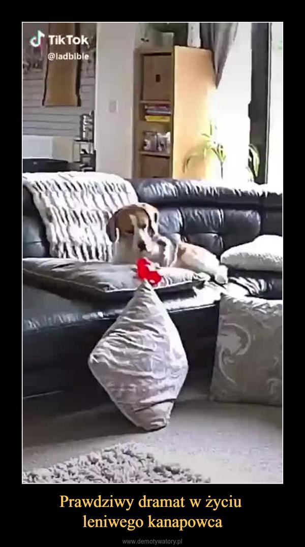 Prawdziwy dramat w życiu leniwego kanapowca –