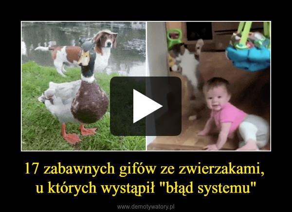 """17 zabawnych gifów ze zwierzakami, u których wystąpił """"błąd systemu"""" –"""