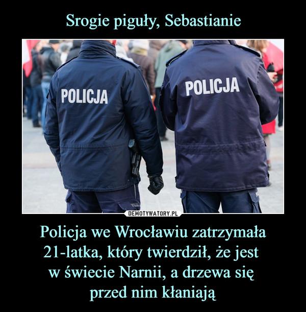 Policja we Wrocławiu zatrzymała 21-latka, który twierdził, że jest w świecie Narnii, a drzewa się przed nim kłaniają –