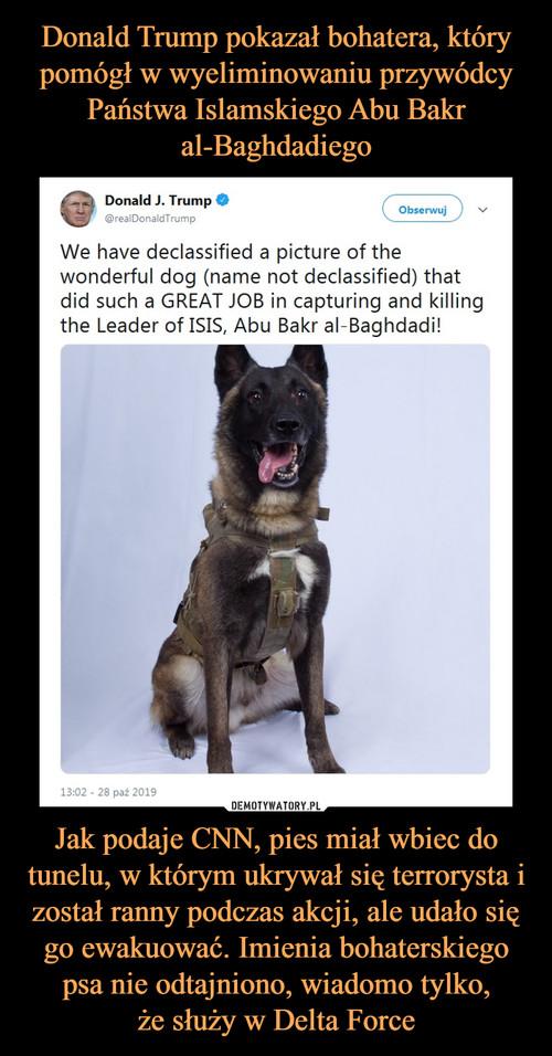 Donald Trump pokazał bohatera, który pomógł w wyeliminowaniu przywódcy Państwa Islamskiego Abu Bakr al-Baghdadiego Jak podaje CNN, pies miał wbiec do tunelu, w którym ukrywał się terrorysta i został ranny podczas akcji, ale udało się go ewakuować. Imienia bohaterskiego psa nie odtajniono, wiadomo tylko, że służy w Delta Force