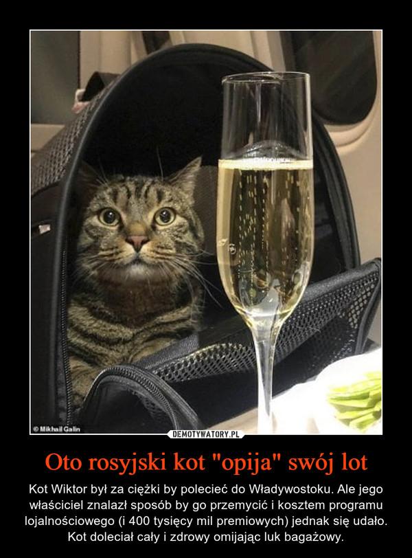 """Oto rosyjski kot """"opija"""" swój lot – Kot Wiktor był za ciężki by polecieć do Władywostoku. Ale jego właściciel znalazł sposób by go przemycić i kosztem programu lojalnościowego (i 400 tysięcy mil premiowych) jednak się udało. Kot doleciał cały i zdrowy omijając luk bagażowy."""