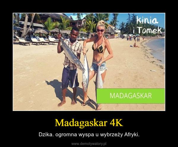 Madagaskar 4K – Dzika. ogromna wyspa u wybrzeży Afryki.