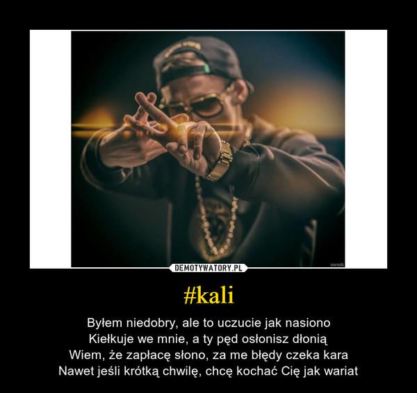 #kali – Byłem niedobry, ale to uczucie jak nasionoKiełkuje we mnie, a ty pęd osłonisz dłoniąWiem, że zapłacę słono, za me błędy czeka karaNawet jeśli krótką chwilę, chcę kochać Cię jak wariat