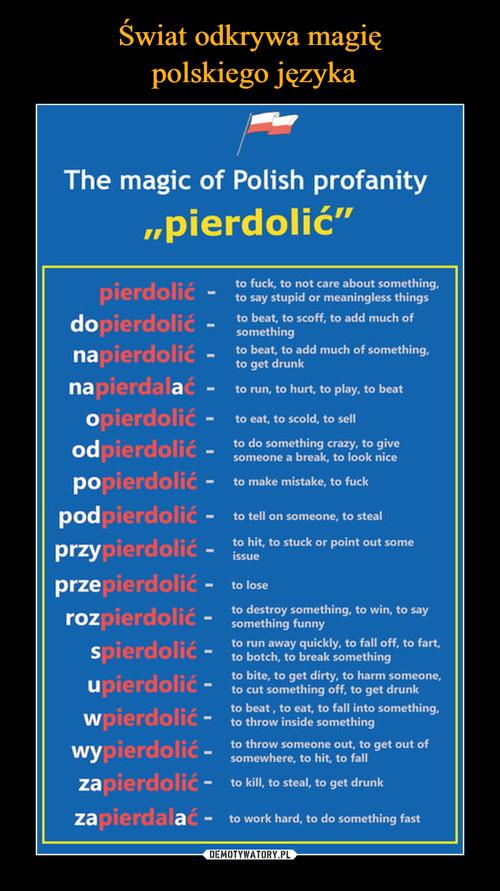 Świat odkrywa magię  polskiego języka