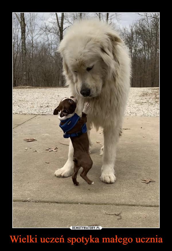 Wielki uczeń spotyka małego ucznia –