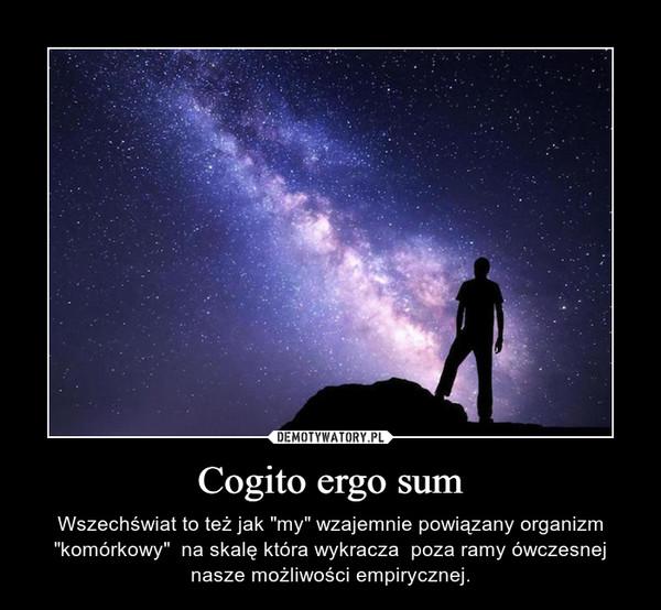 """Cogito ergo sum – Wszechświat to też jak """"my"""" wzajemnie powiązany organizm """"komórkowy""""  na skalę która wykracza  poza ramy ówczesnej nasze możliwości empirycznej."""