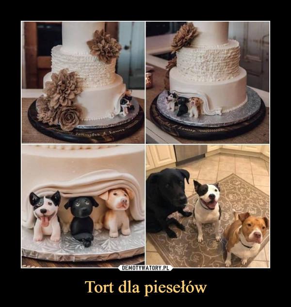 Tort dla piesełów –