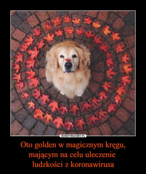 Oto golden w magicznym kręgu, mającym na celu uleczenie  ludzkości z koronawirusa