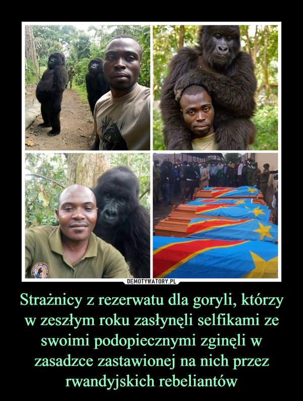 Strażnicy z rezerwatu dla goryli, którzy w zeszłym roku zasłynęli selfikami ze swoimi podopiecznymi zginęli w zasadzce zastawionej na nich przez rwandyjskich rebeliantów –