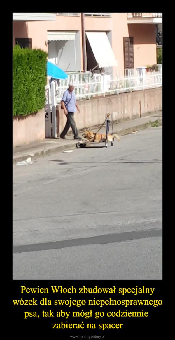 Pewien Włoch zbudował specjalny wózek dla swojego niepełnosprawnego psa, tak aby mógł go codziennie zabierać na spacer –