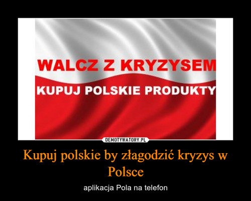 Kupuj polskie by złagodzić kryzys w Polsce