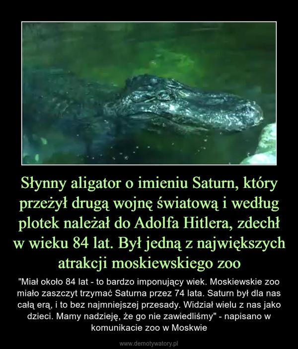 """Słynny aligator o imieniu Saturn, który przeżył drugą wojnę światową i według plotek należał do Adolfa Hitlera, zdechł w wieku 84 lat. Był jedną z największych atrakcji moskiewskiego zoo – """"Miał około 84 lat - to bardzo imponujący wiek. Moskiewskie zoo miało zaszczyt trzymać Saturna przez 74 lata. Saturn był dla nas całą erą, i to bez najmniejszej przesady. Widział wielu z nas jako dzieci. Mamy nadzieję, że go nie zawiedliśmy"""" - napisano w komunikacie zoo w Moskwie"""