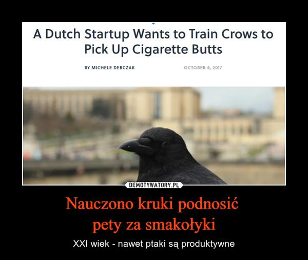 Nauczono kruki podnosić pety za smakołyki – XXI wiek - nawet ptaki są produktywne A Dutch Startup wants to train crows to pick up cigarette butts
