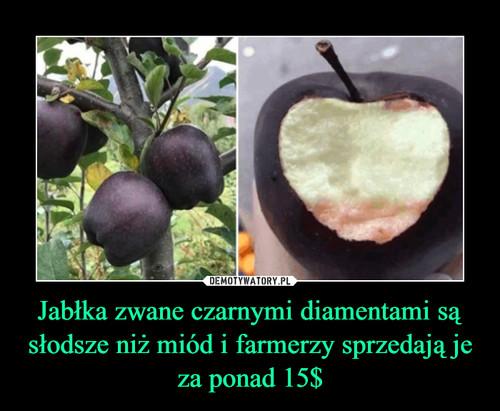 Jabłka zwane czarnymi diamentami są słodsze niż miód i farmerzy sprzedają je za ponad 15$