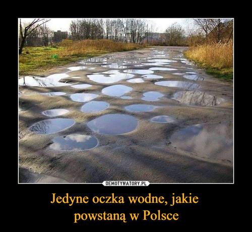 Jedyne oczka wodne, jakie  powstaną w Polsce