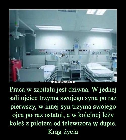 Praca w szpitalu jest dziwna. W jednej sali ojciec trzyma swojego syna po raz pierwszy, w innej syn trzyma swojego ojca po raz ostatni, a w kolejnej leży koleś z pilotem od telewizora w dupie. Krąg życia