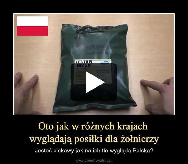 Oto jak w różnych krajach wyglądają posiłki dla żołnierzy – Jesteś ciekawy jak na ich tle wygląda Polska?