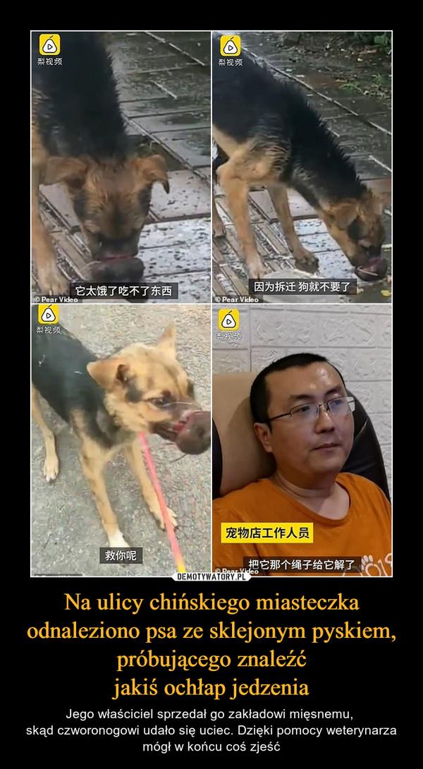 Na ulicy chińskiego miasteczka odnaleziono psa ze sklejonym pyskiem, próbującego znaleźćjakiś ochłap jedzenia – Jego właściciel sprzedał go zakładowi mięsnemu, skąd czworonogowi udało się uciec. Dzięki pomocy weterynarza mógł w końcu coś zjeść
