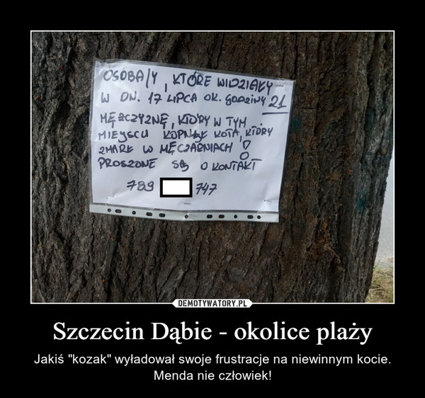 """Szczecin Dąbie - okolice plaży – Jakiś """"kozak"""" wyładował swoje frustracje na niewinnym kocie. Menda nie człowiek!"""
