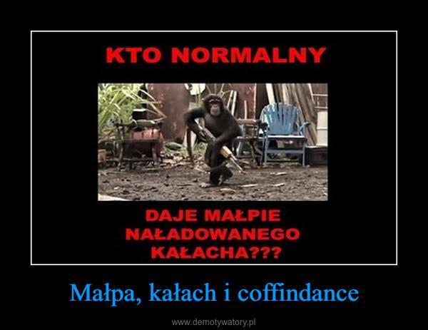 Małpa, kałach i coffindance –