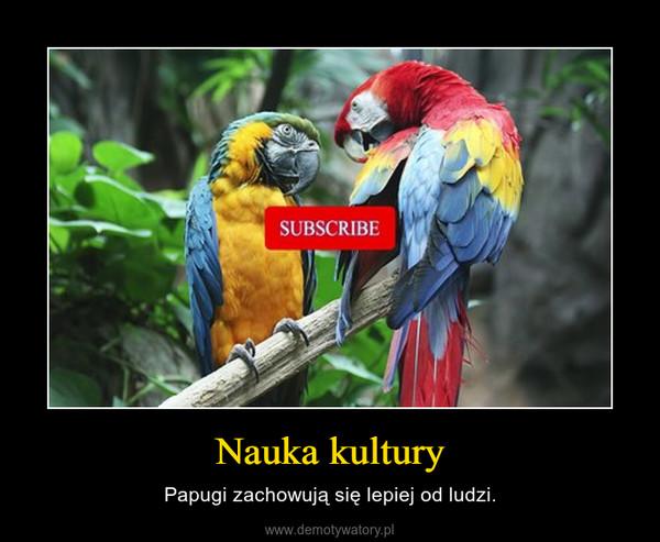 Nauka kultury – Papugi zachowują się lepiej od ludzi.