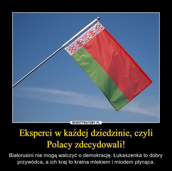Eksperci w każdej dziedzinie, czyli Polacy zdecydowali! – Białorusini nie mogą walczyć o demokrację. Łukaszenka to dobry przywódca, a ich kraj to kraina mlekiem i miodem płynąca.