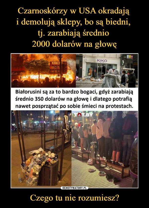 Czego tu nie rozumiesz? –  Białorusini są za to bardzo bogaci, gdyż zarabiają średnio 350 dolarów na głowę i dlatego potrafią nawet posprzątać po sobie śmieci na protestach