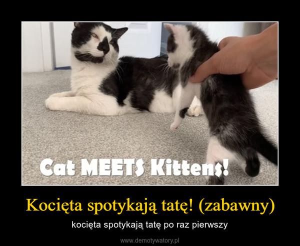 Kocięta spotykają tatę! (zabawny) – kocięta spotykają tatę po raz pierwszy