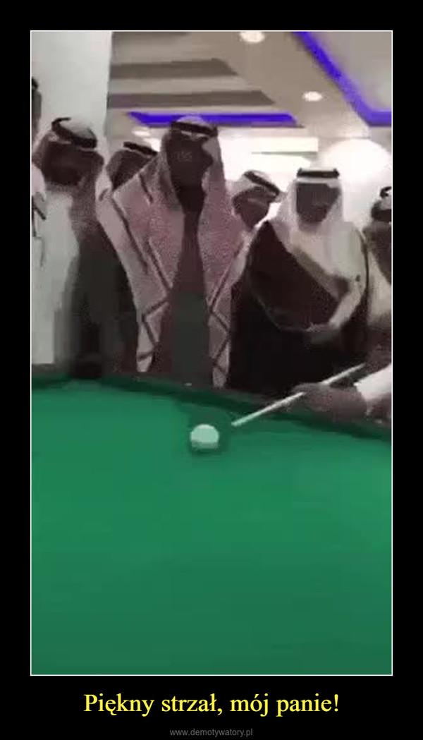 Piękny strzał, mój panie! –