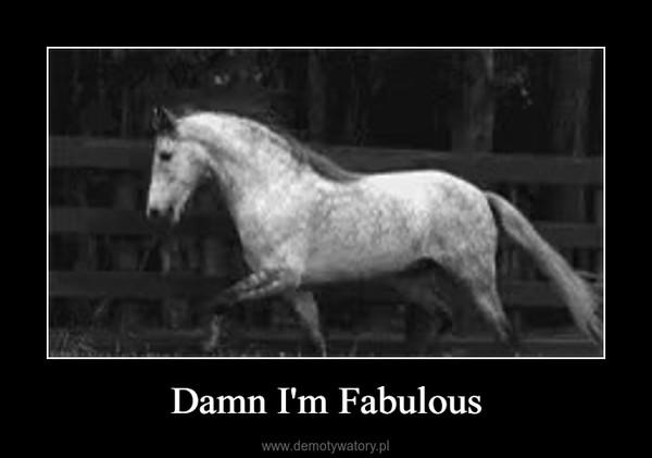 Damn I'm Fabulous –