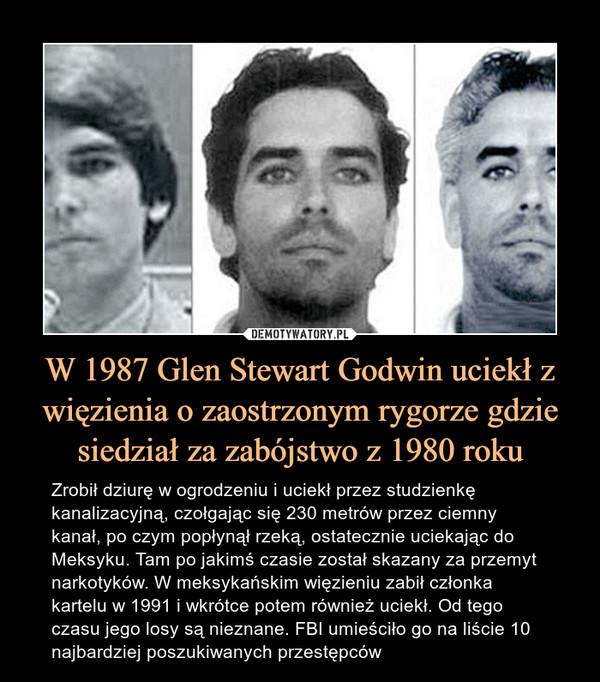 W 1987 Glen Stewart Godwin uciekł z więzienia o zaostrzonym rygorze gdzie siedział za zabójstwo z 1980 roku – Zrobił dziurę w ogrodzeniu i uciekł przez studzienkę kanalizacyjną, czołgając się 230 metrów przez ciemny kanał, po czym popłynął rzeką, ostatecznie uciekając do Meksyku. Tam po jakimś czasie został skazany za przemyt narkotyków. W meksykańskim więzieniu zabił członka kartelu w 1991 i wkrótce potem również uciekł. Od tego czasu jego losy są nieznane. FBI umieściło go na liście 10 najbardziej poszukiwanych przestępców