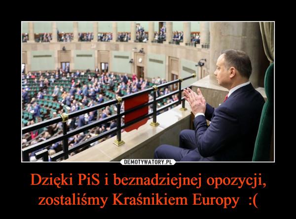 Dzięki PiS i beznadziejnej opozycji, zostaliśmy Kraśnikiem Europy  :( –