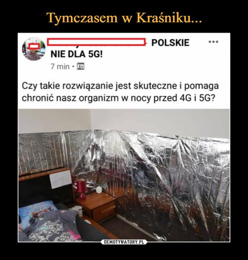 Tymczasem w Kraśniku...