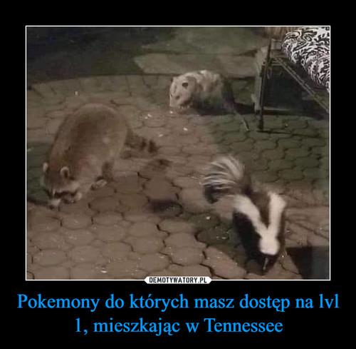 Pokemony do których masz dostęp na lvl 1, mieszkając w Tennessee