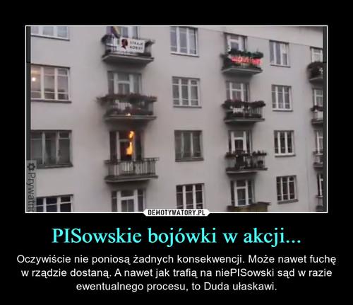 PISowskie bojówki w akcji...