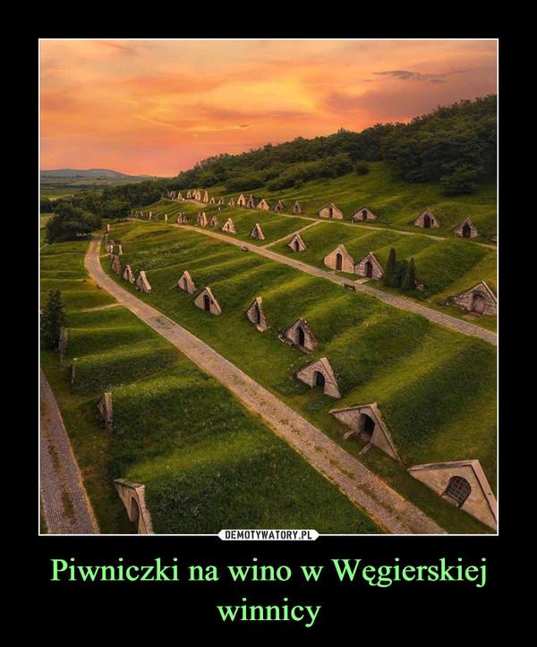 Piwniczki na wino w Węgierskiej winnicy –