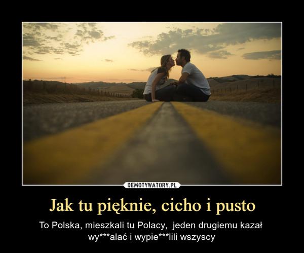 Jak tu pięknie, cicho i pusto – To Polska, mieszkali tu Polacy,  jeden drugiemu kazał wy***alać i wypie***lili wszyscy