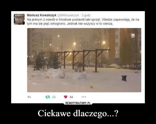 Ciekawe dlaczego...? –  Na jednym z osiedli w Moskwie postawili taki sprzęt. Władze zapewniają, że na tym ma się piąć winogrono. Jednak nie wszyscy w to wierzą.