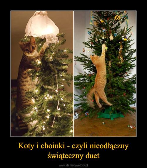 Koty i choinki - czyli nieodłączny świąteczny duet
