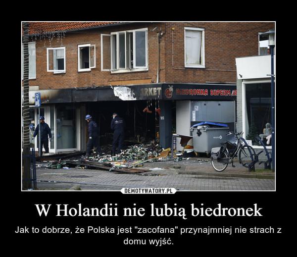 """W Holandii nie lubią biedronek – Jak to dobrze, że Polska jest """"zacofana"""" przynajmniej nie strach z domu wyjść."""