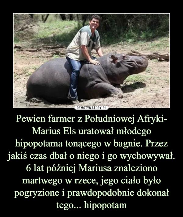 Pewien farmer z Południowej Afryki- Marius Els uratował młodego hipopotama tonącego w bagnie. Przez jakiś czas dbał o niego i go wychowywał. 6 lat później Mariusa znaleziono martwego w rzece, jego ciało było pogryzione i prawdopodobnie dokonał tego... hipopotam –