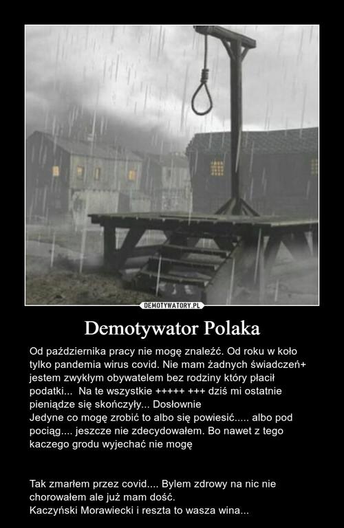 Demotywator Polaka